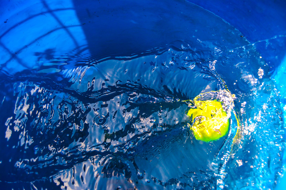 Мяч под водой - Света Кондрашова