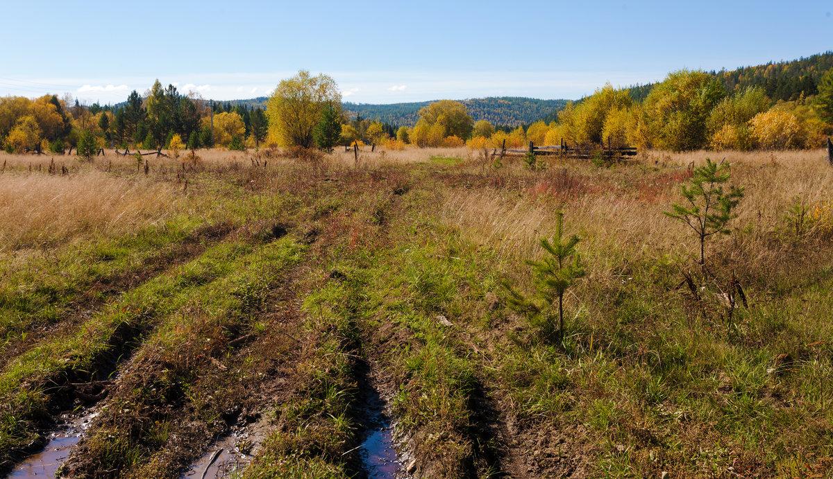 Дорожка в осень - Анатолий Иргл