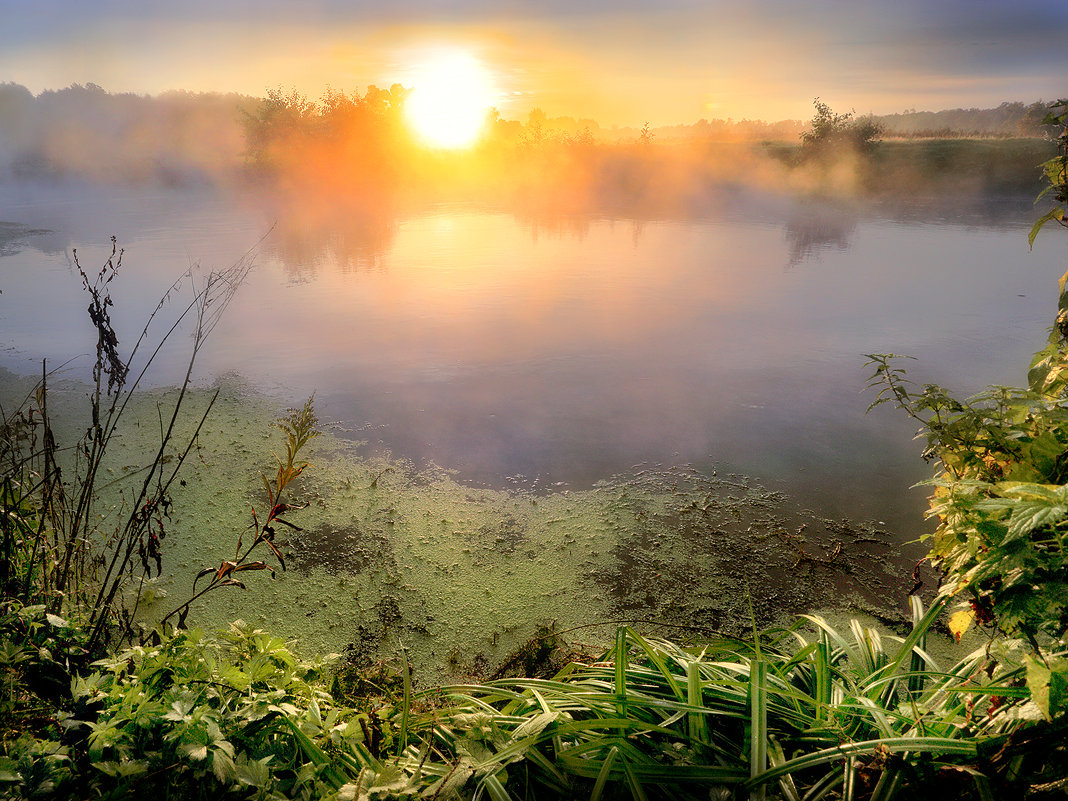 Воскресный рассвет сентября... - Андрей Войцехов