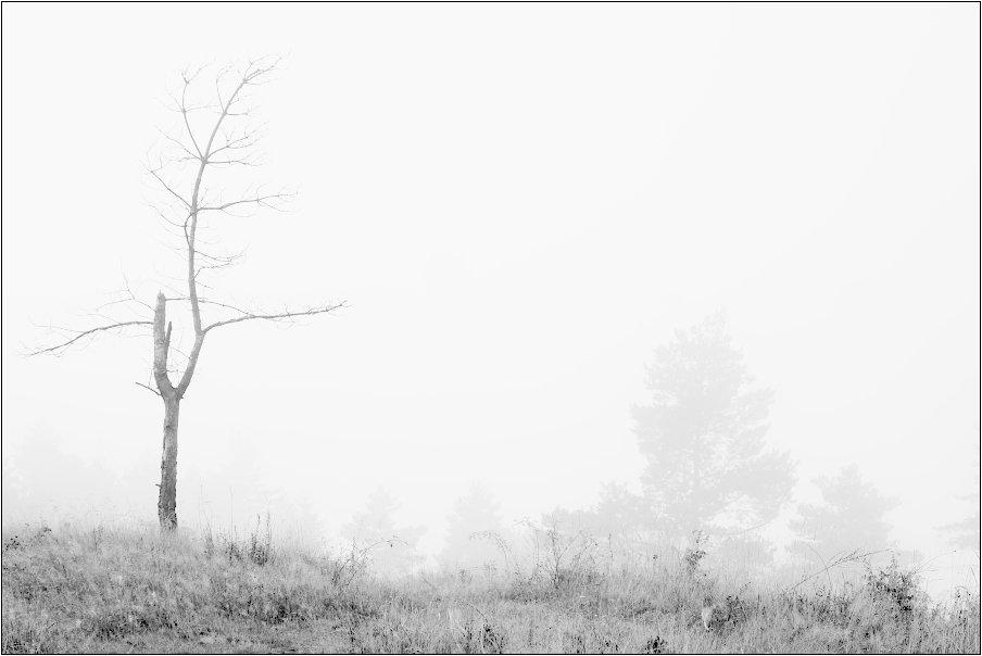 и туман в горах - Jiří Valiska