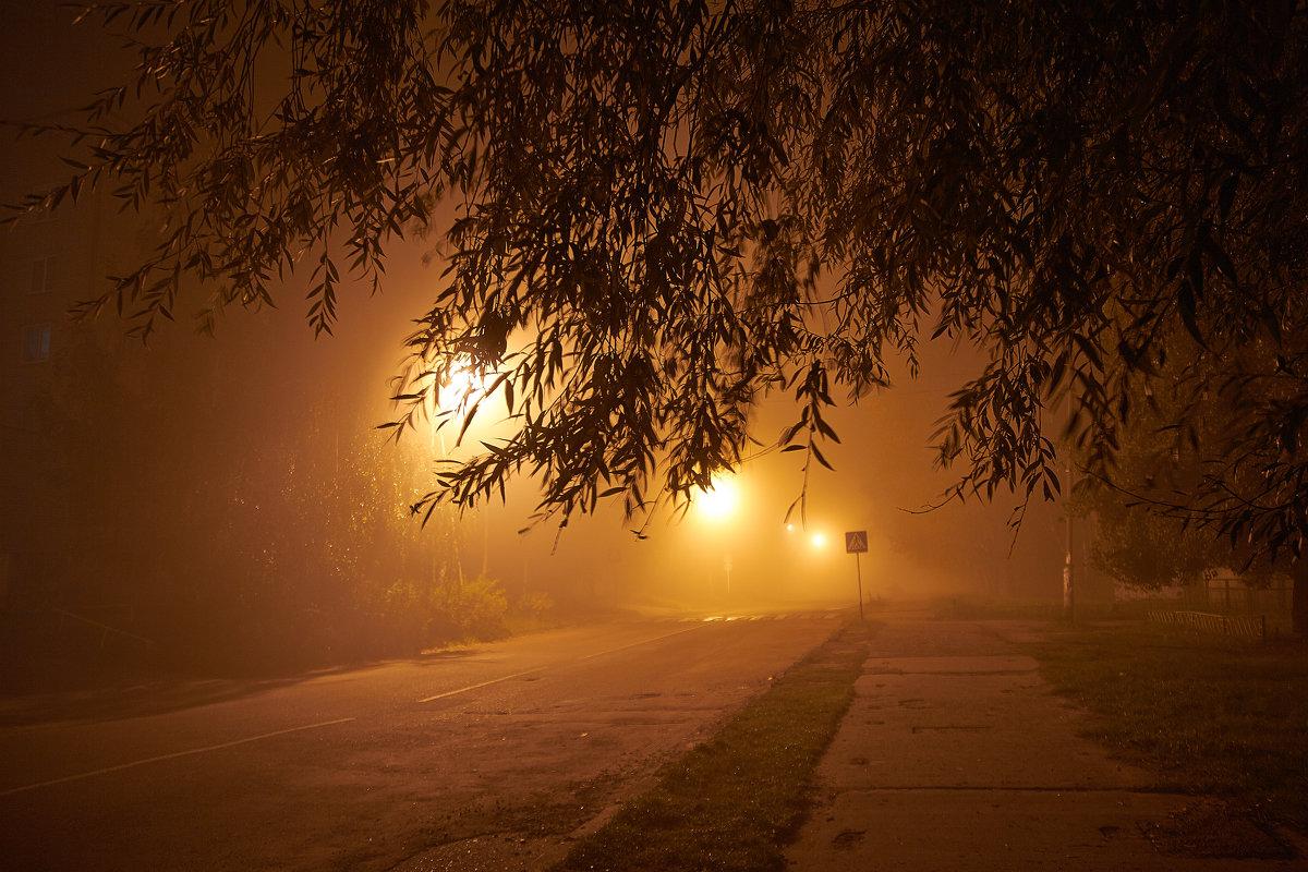 туман - Седа Ковтун