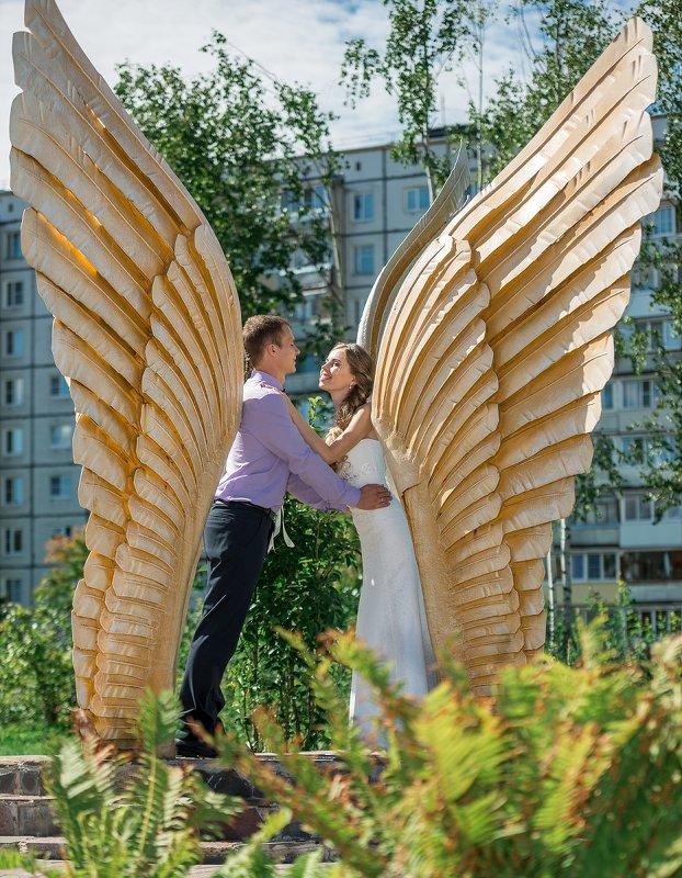 Ангелы - Иван Щербина
