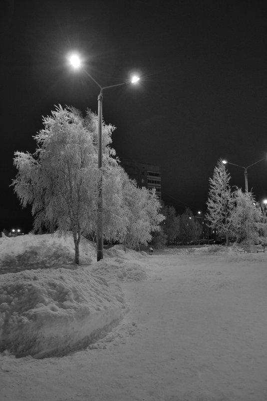 Зимний вечер - Ольга