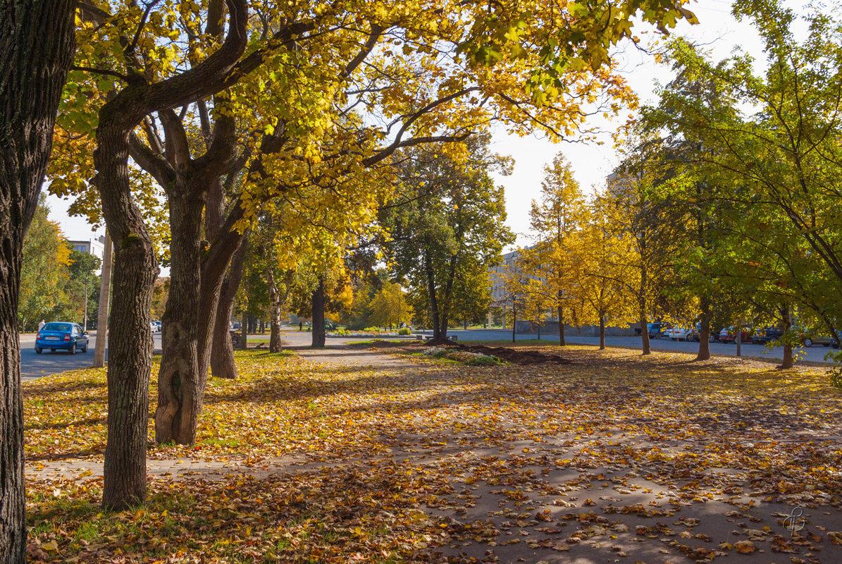 Осень в городе - Виталий