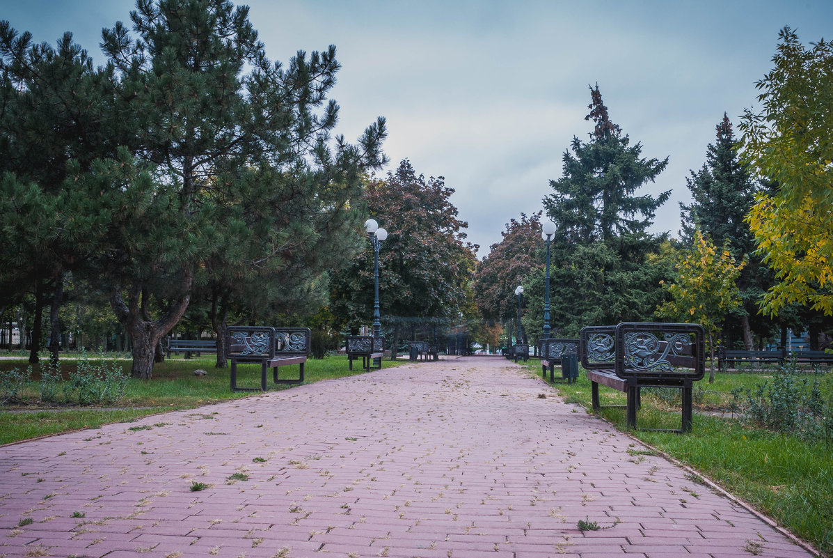 осенний парк утром - Алина Гриб