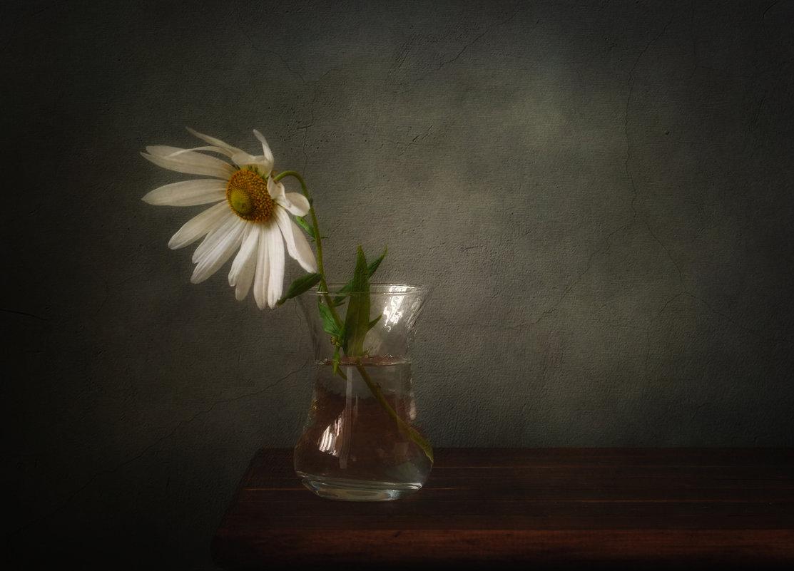 одиночество... - Natali-C C