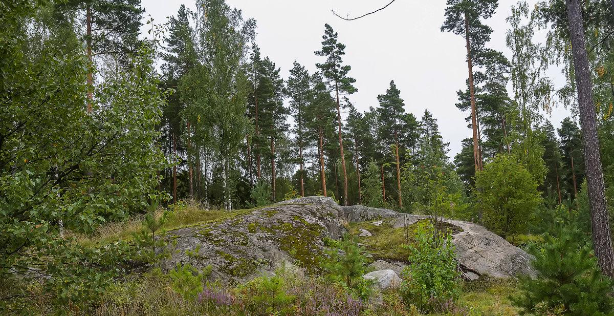 Хельсинки - leo yagonen