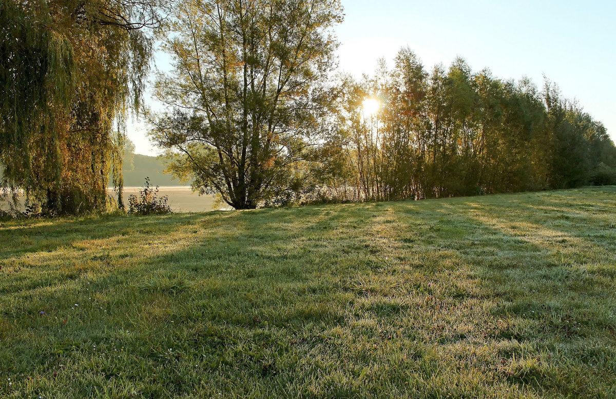 Утро в росе - Alexander