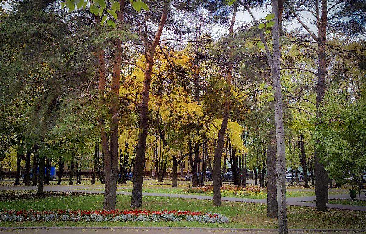 Осень в парках и скверах Москвы. - Владимир Безбородов