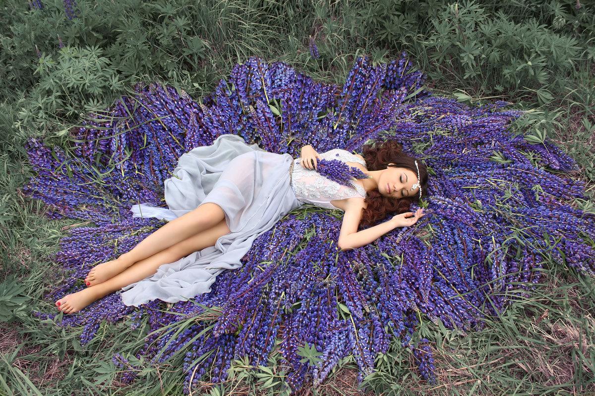 flowers - Sandra Snow