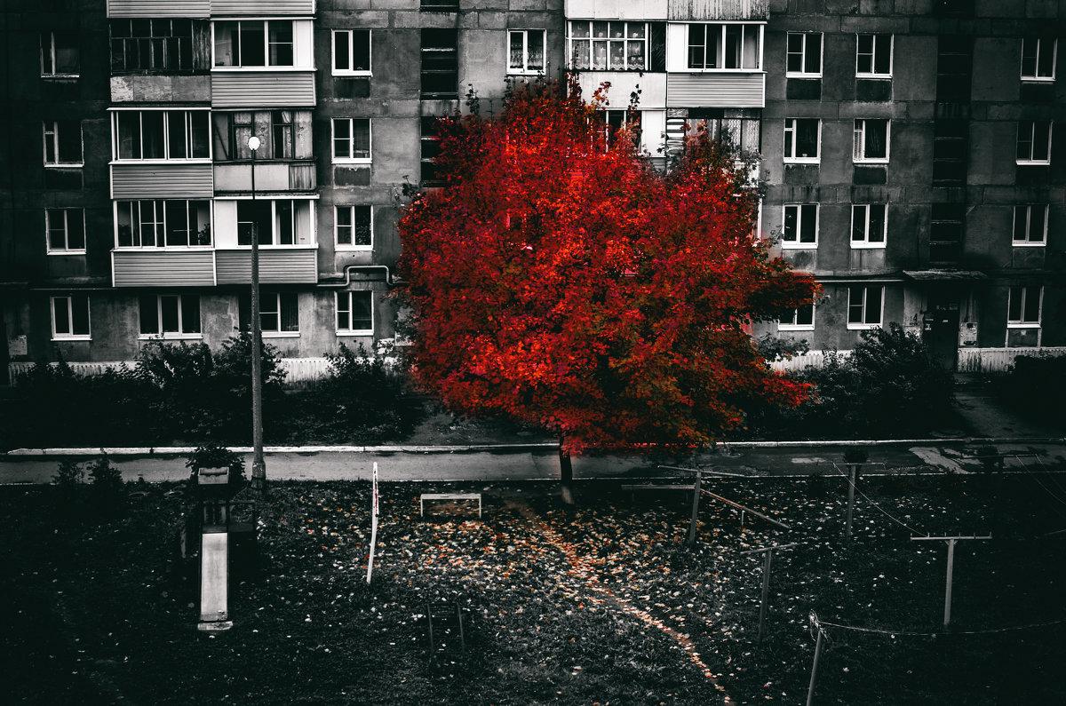 Кровавая осень - Роман Шершнев