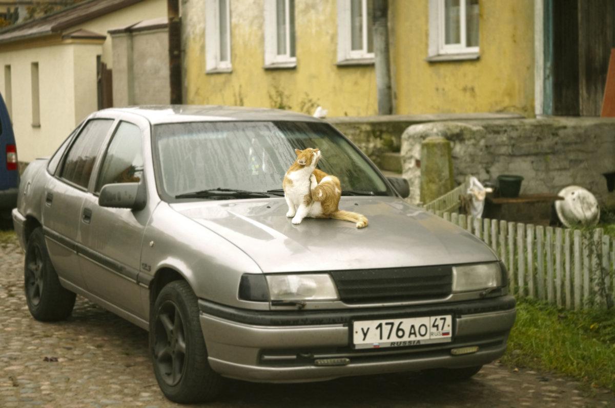 Личное авто ) - сергей лебедев