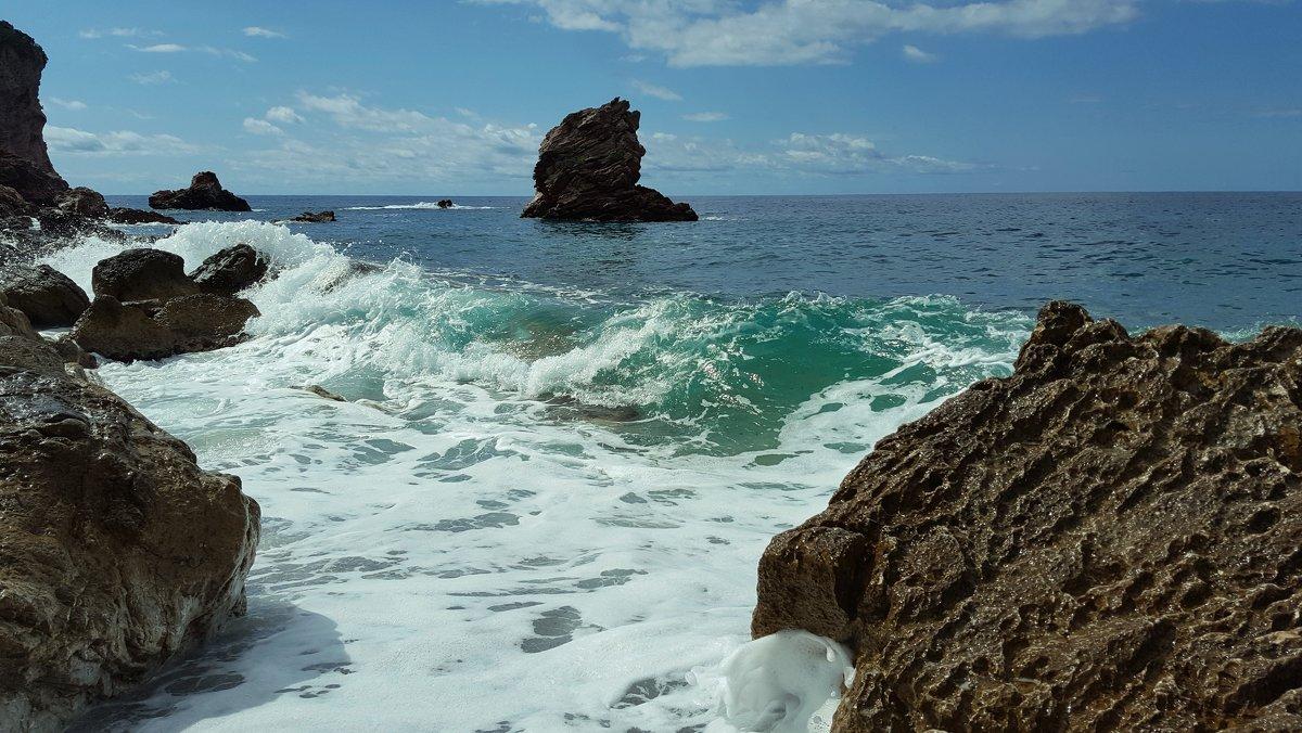 Бетховен в море - liudmila drake