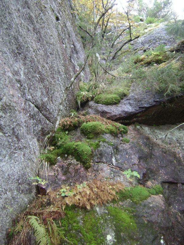 Финские скалы - Марина Домосилецкая