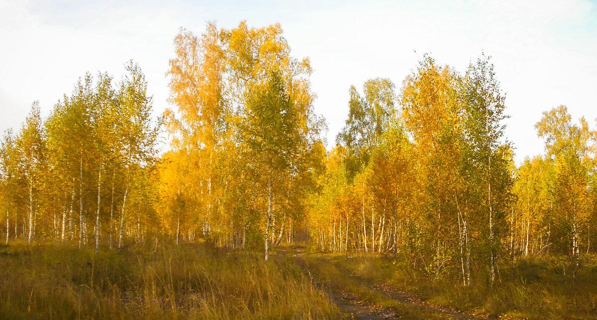 Осень - Владимир Савельев