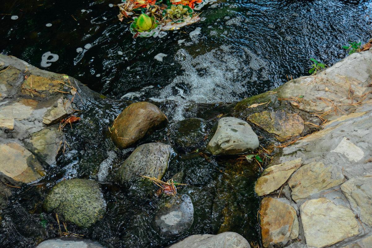 Камни и вода - Света Кондрашова