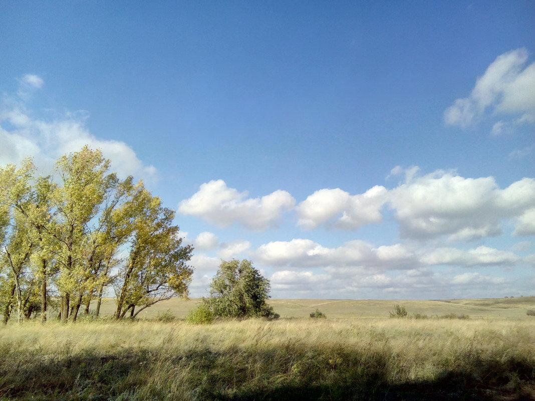 синева облака степь - София