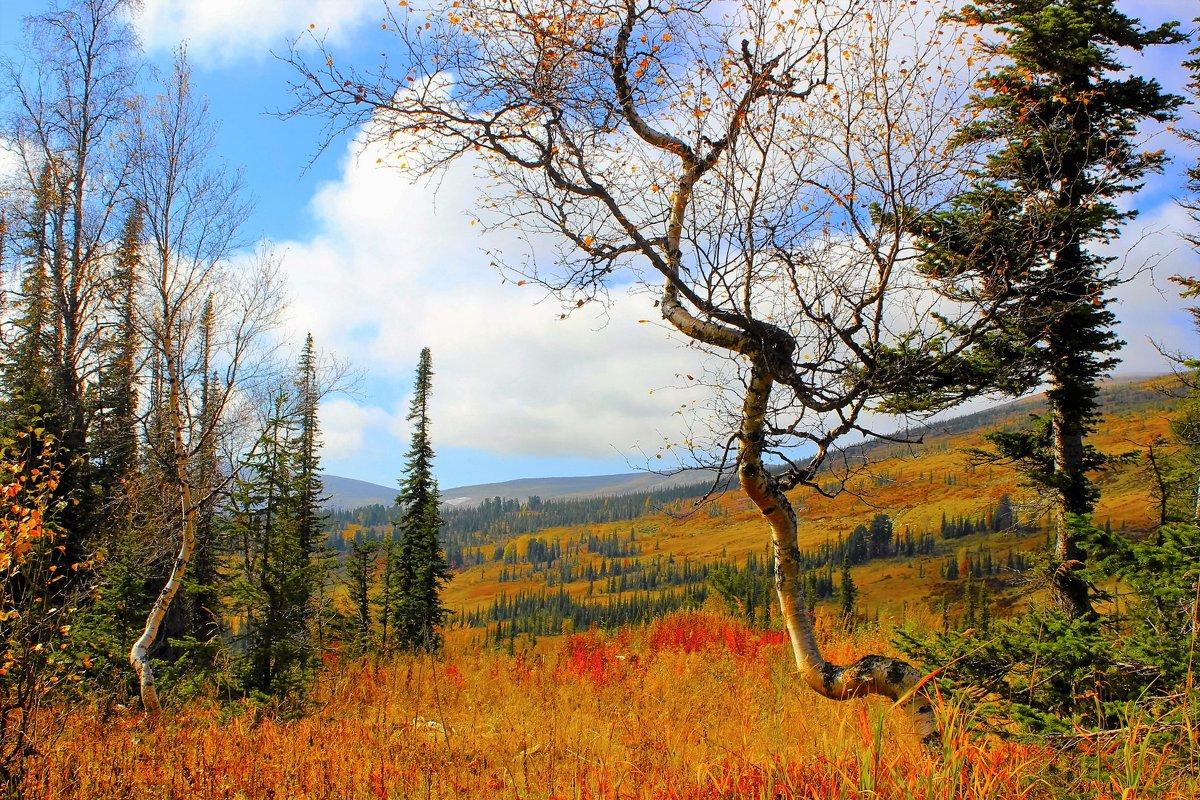 Ранняя осень в горах - Сергей Чиняев