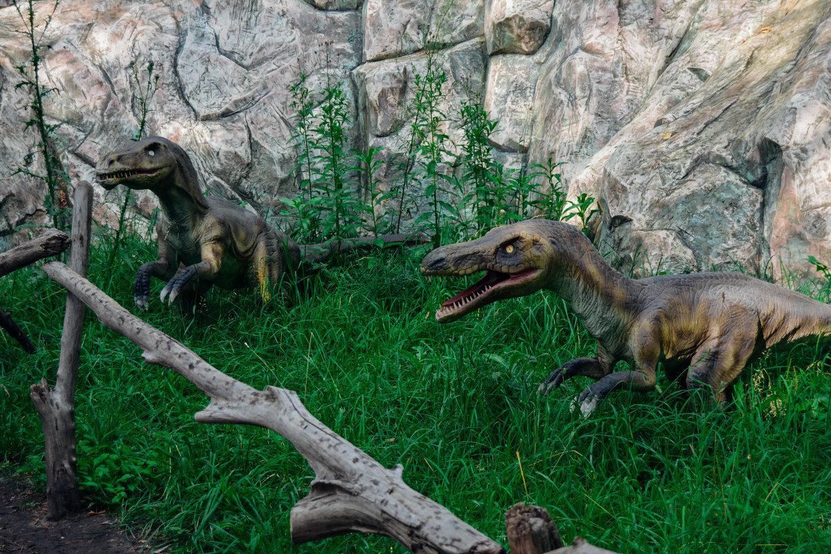 Динозавры вернулись - Света Кондрашова