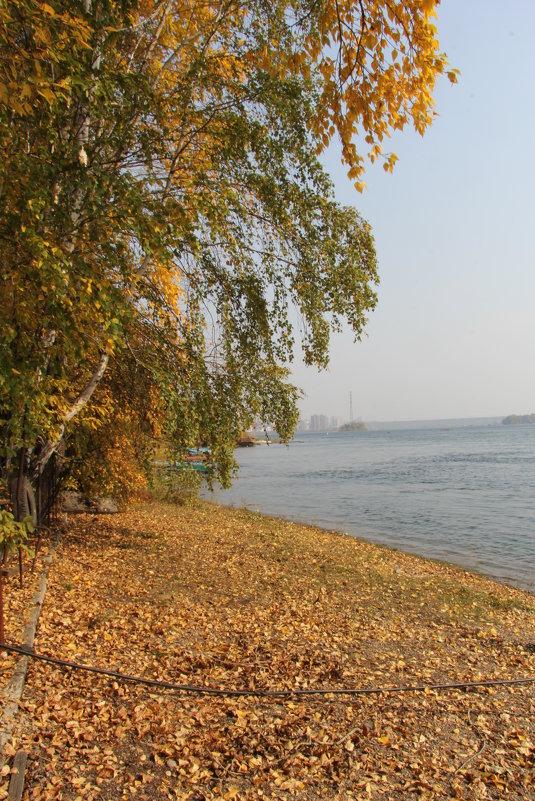 Вот и осень. - Андрей