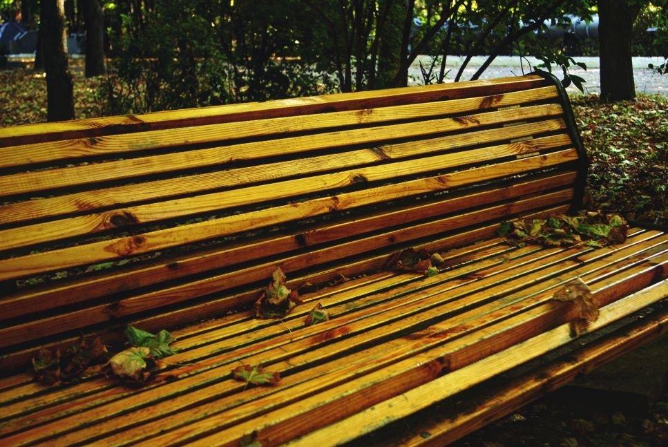 осенняя скамейке в парке - Александр Корчемный