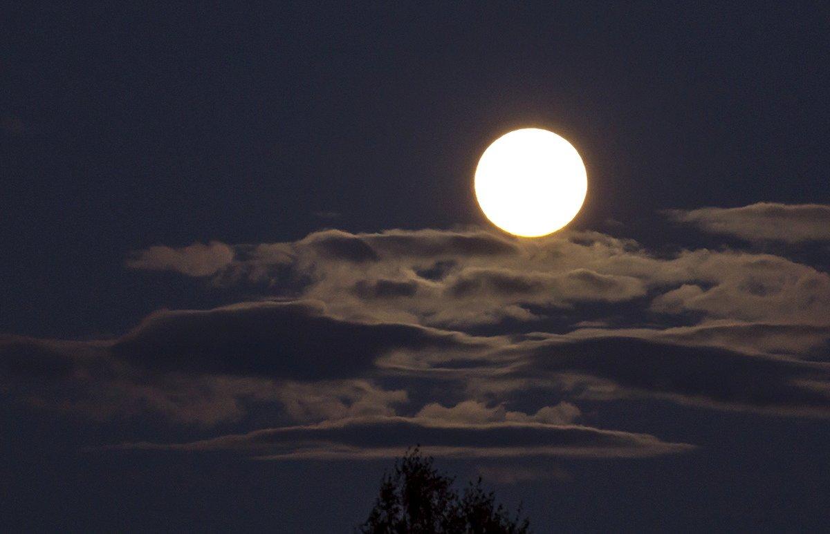 Полная луна - Александр