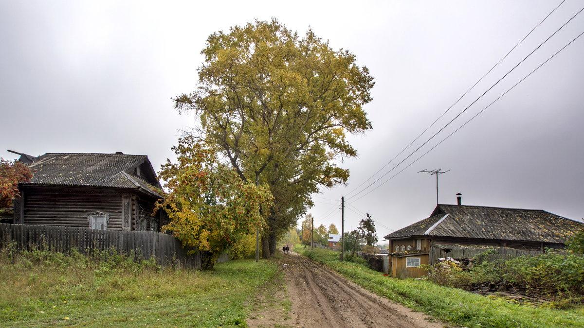 осень пришла - gribushko грибушко Николай