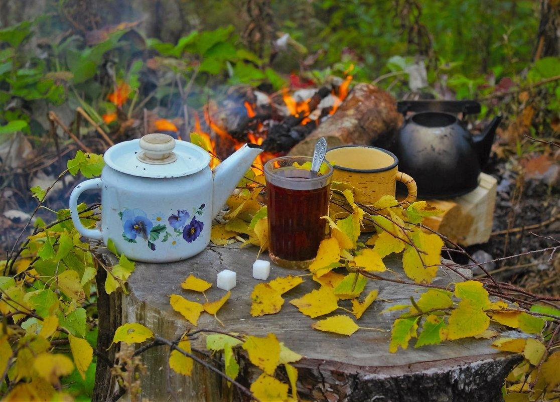 Чай у осеннего костра - Сергей Чиняев