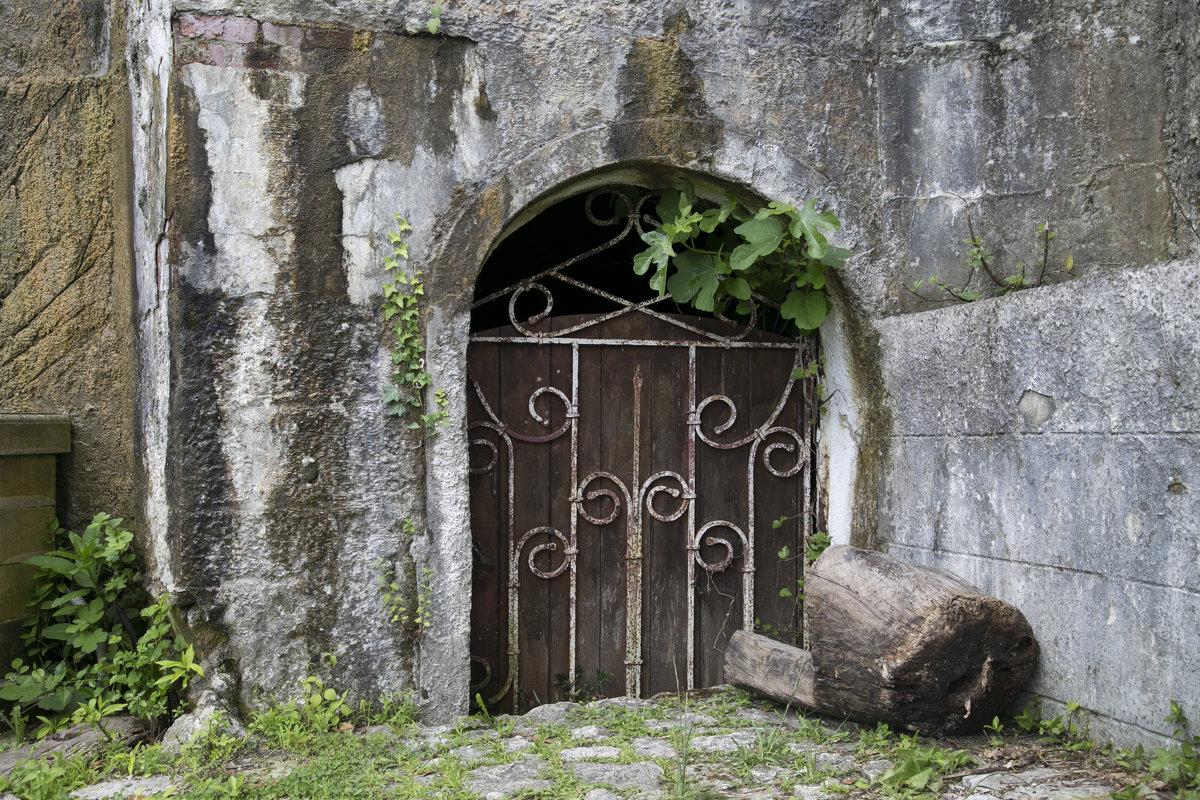 Дверь в сказку - Юлия Васильева
