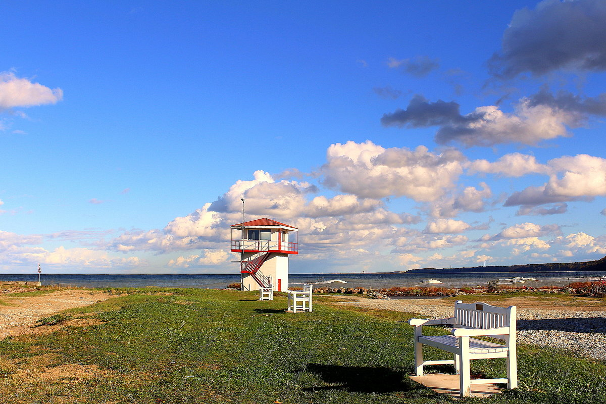 На берегу Финского,район Тойла - Marina Pavlova