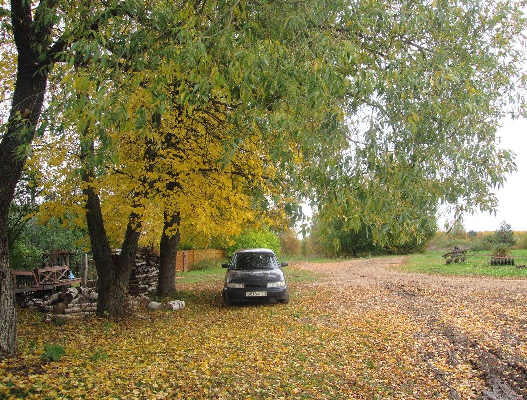 Осень в селе. - Михаил Попов