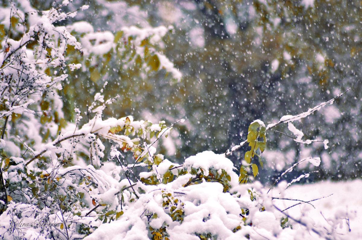 У природы нет плохой погоды - galina tihonova