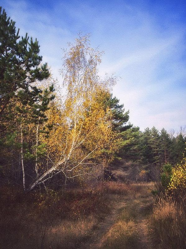 Осень - Paul B.
