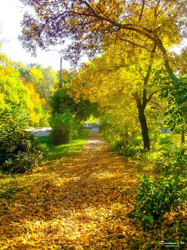 Осенний пейзаж - Вячеслав Баширов