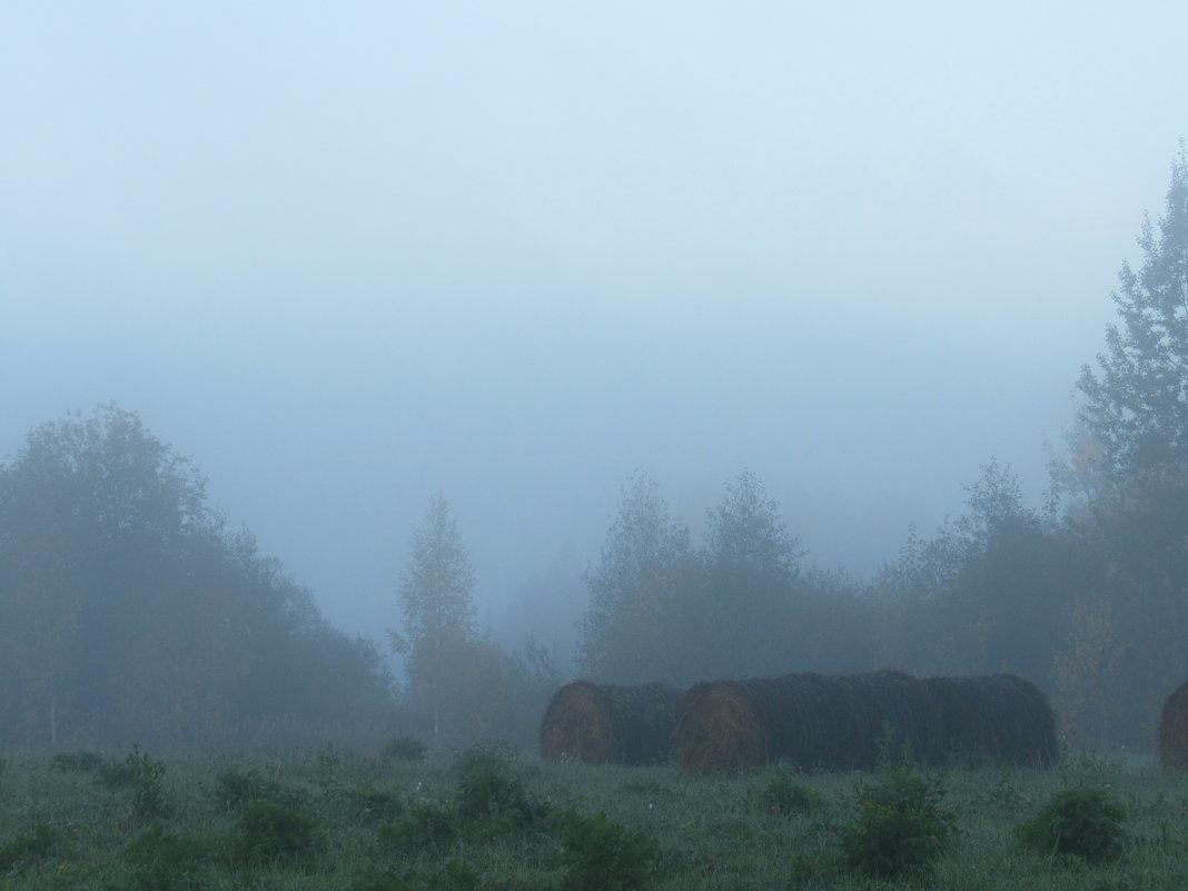 Утро в деревне - Анна Другова