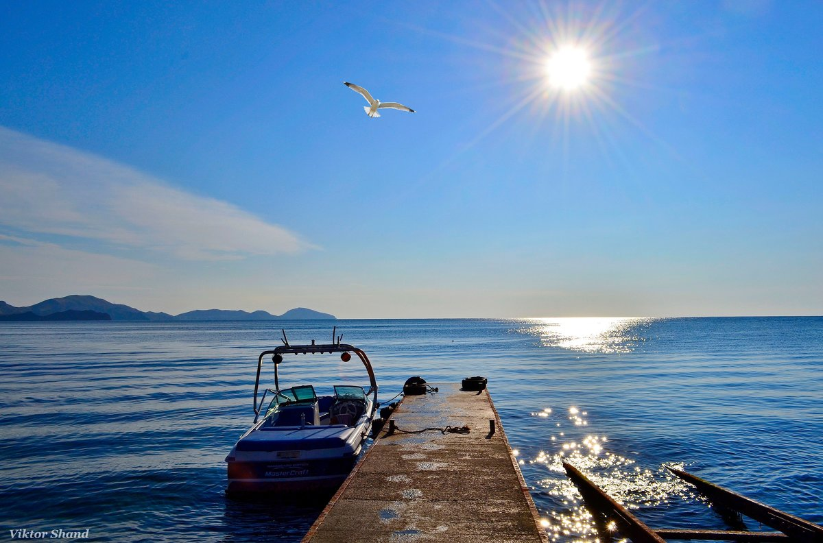 Утро в море - Виктор Шандыбин
