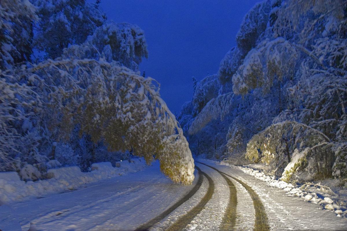 Сказки зимнего леса - юрий Амосов