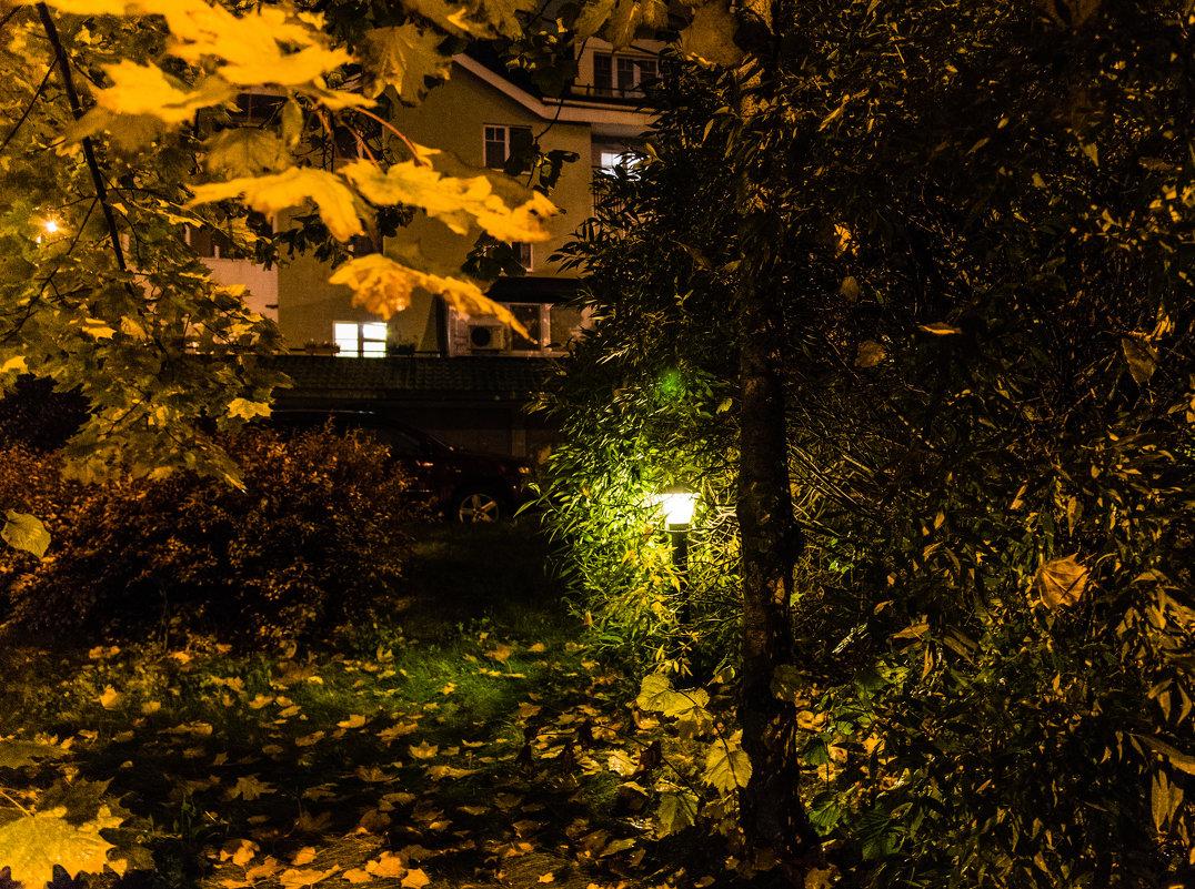 Осень пришла в сады и парки Москвы. - Владимир Безбородов