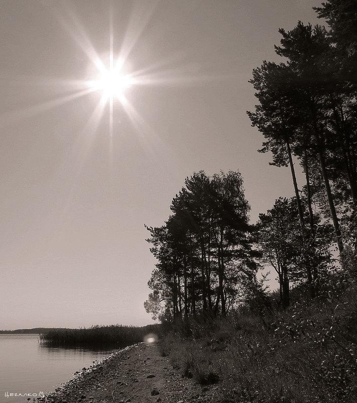 Солнце - Михаил Цегалко