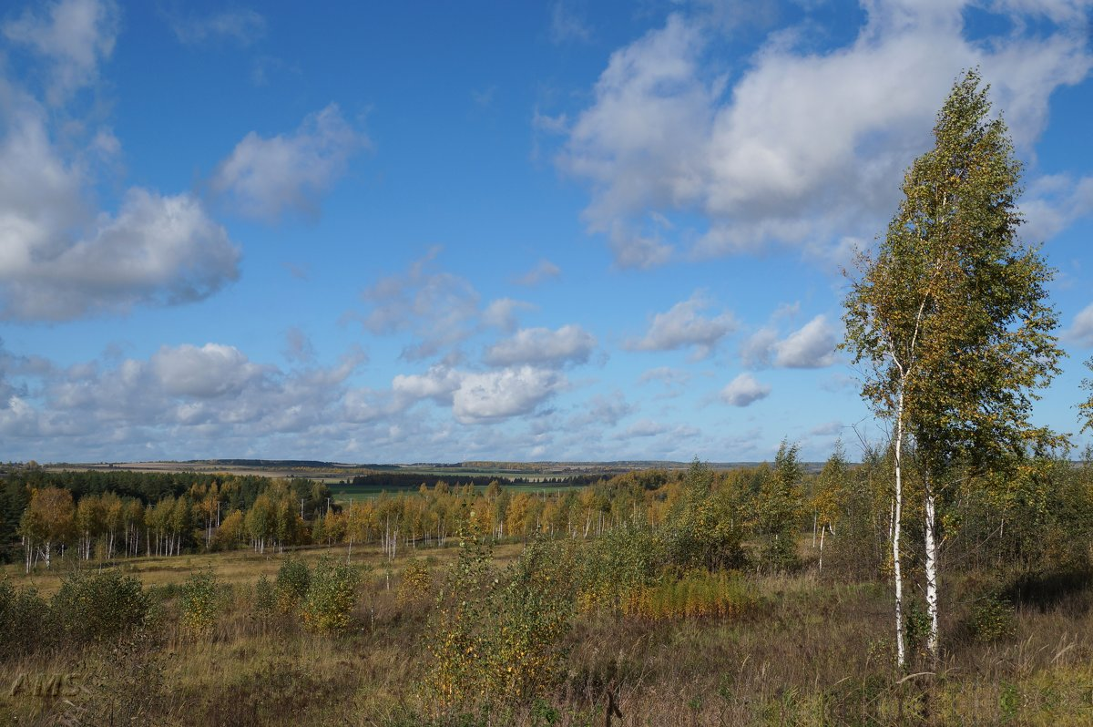 Осенние дали - kolyeretka