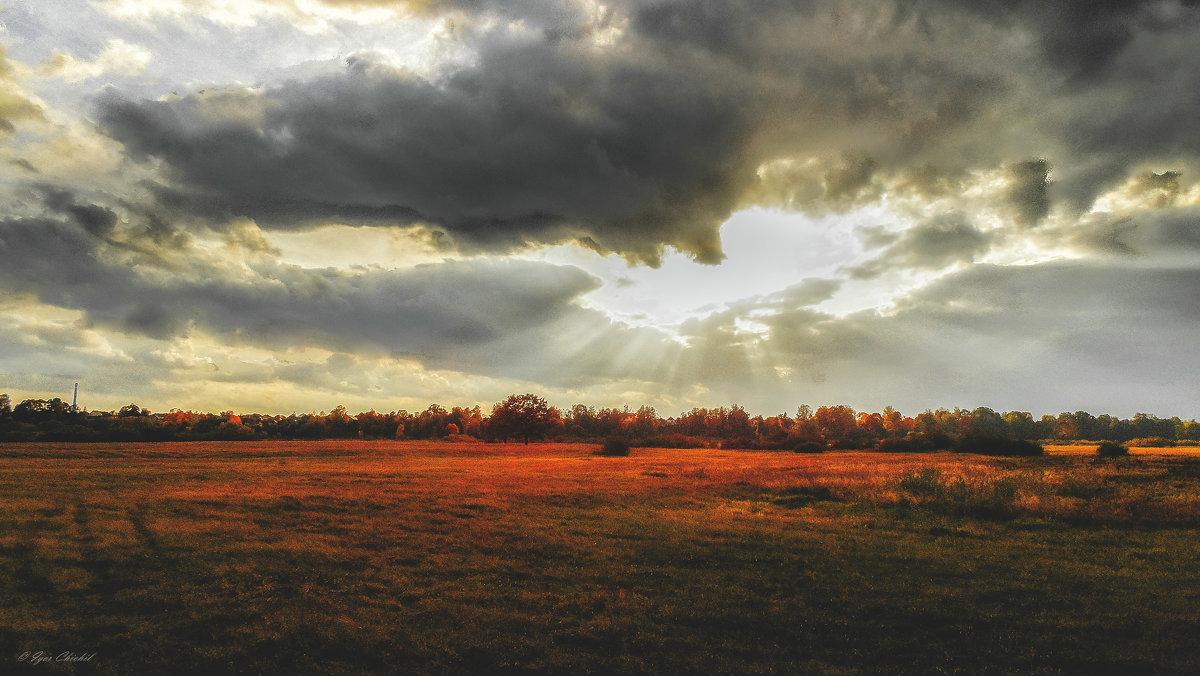 Осень в разгаре - Игорь Чичиль