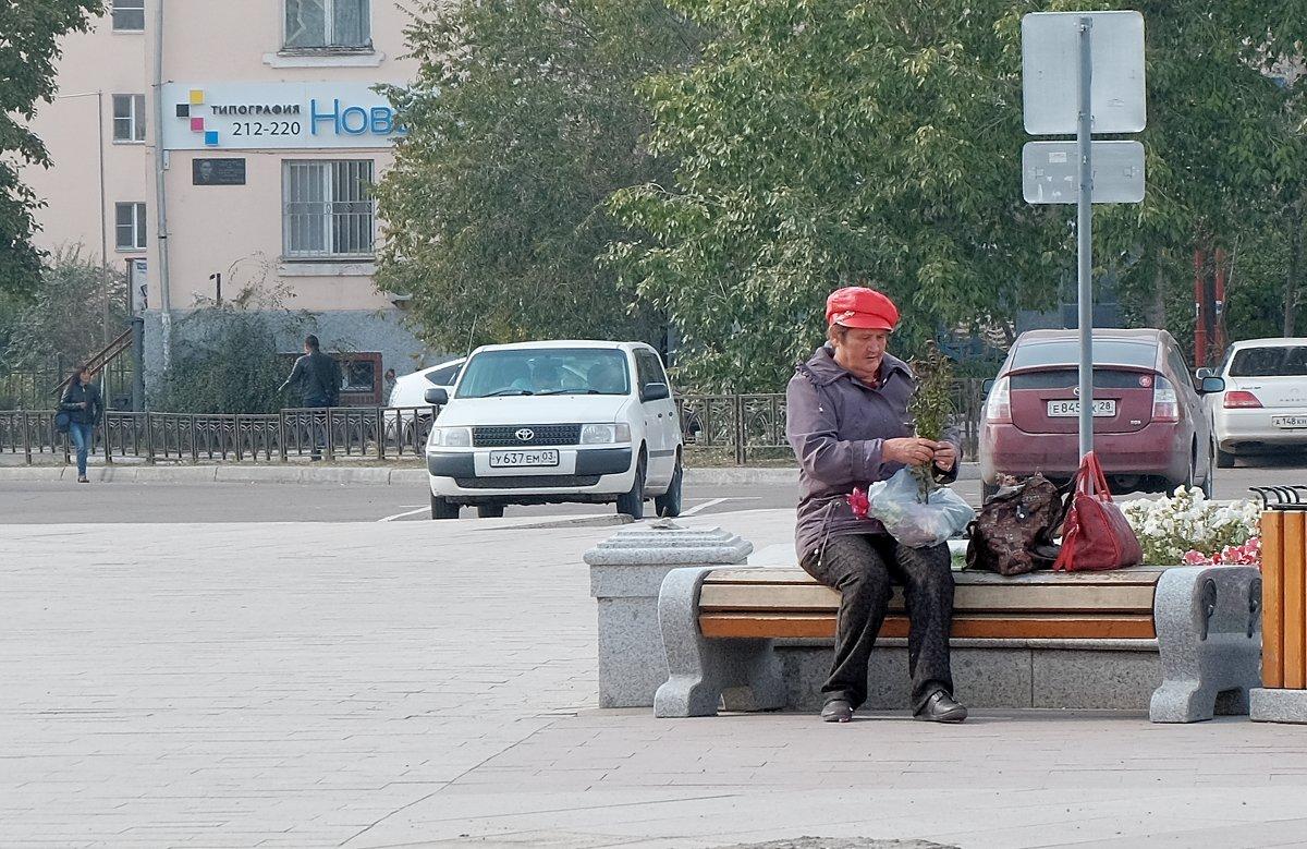 Дармовые семена с городской клумбы - Елена Фалилеева-Диомидова