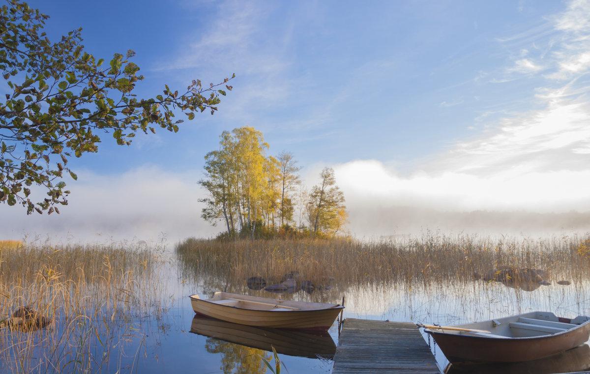 в путь, за туманом - liudmila drake