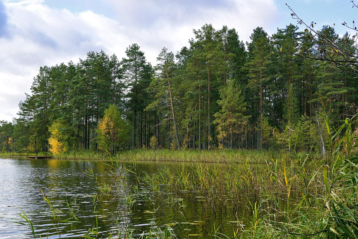 Осень начало - Владимир Филимонов