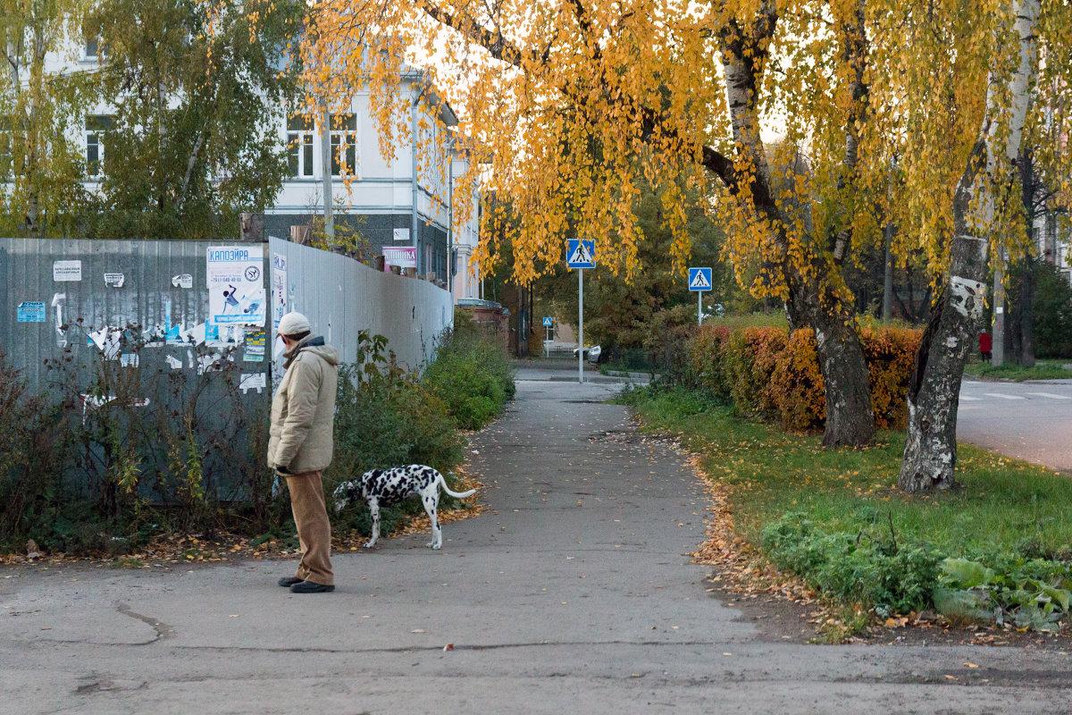Замаскировался под березку - Татьяна Копосова