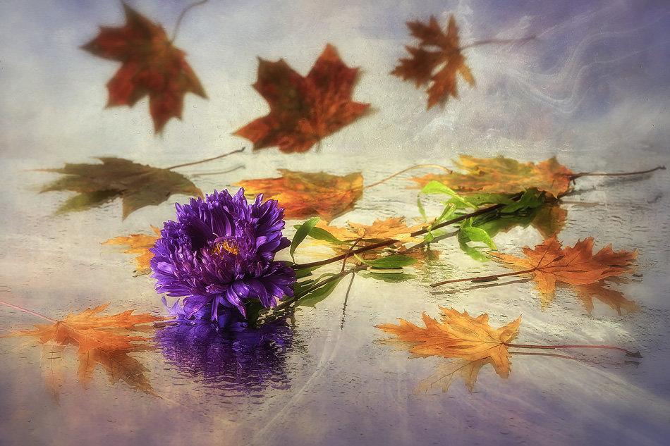 Осенний вальс - Ирина Приходько