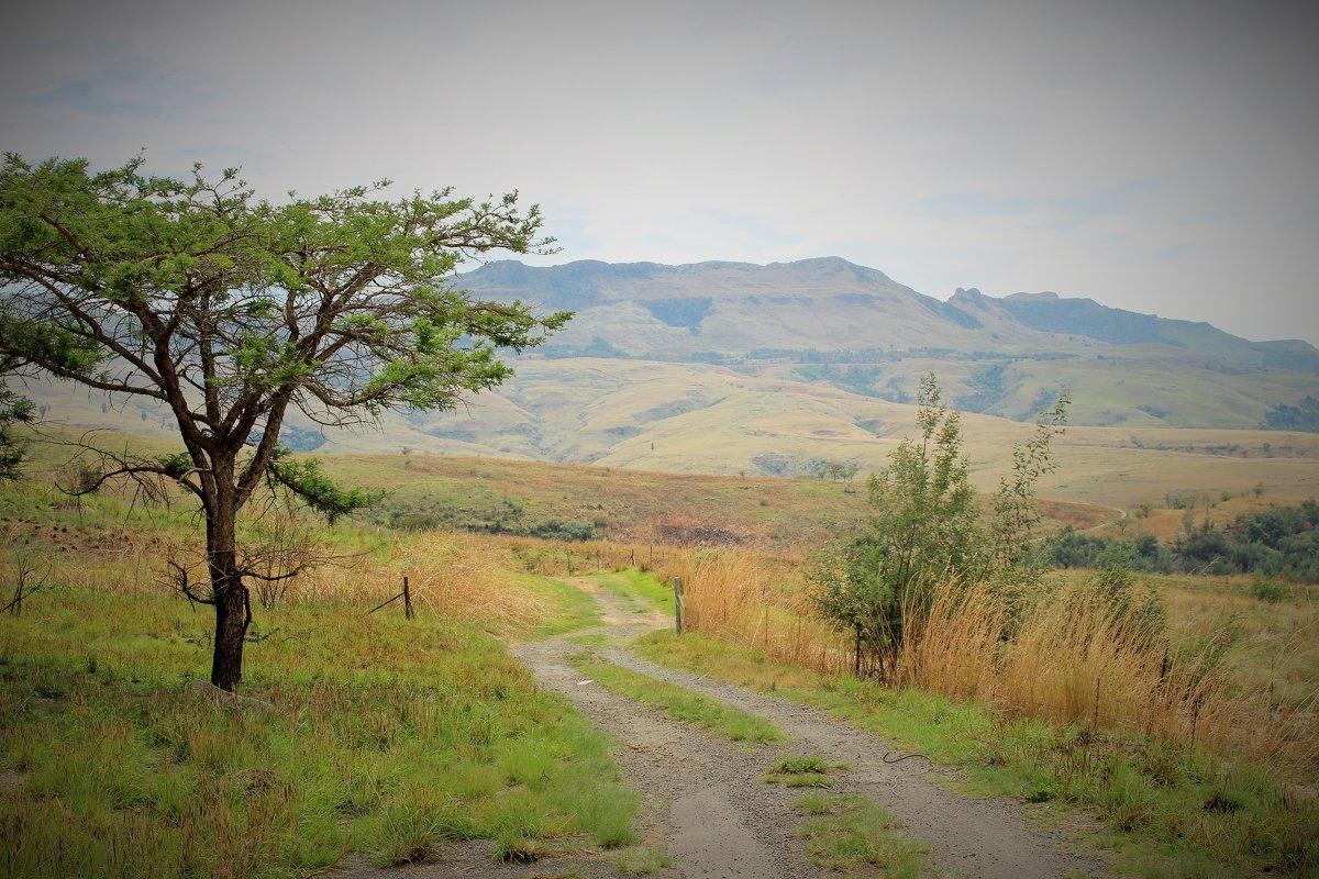 Квазулу-Наталь, ЮАР - Julia A