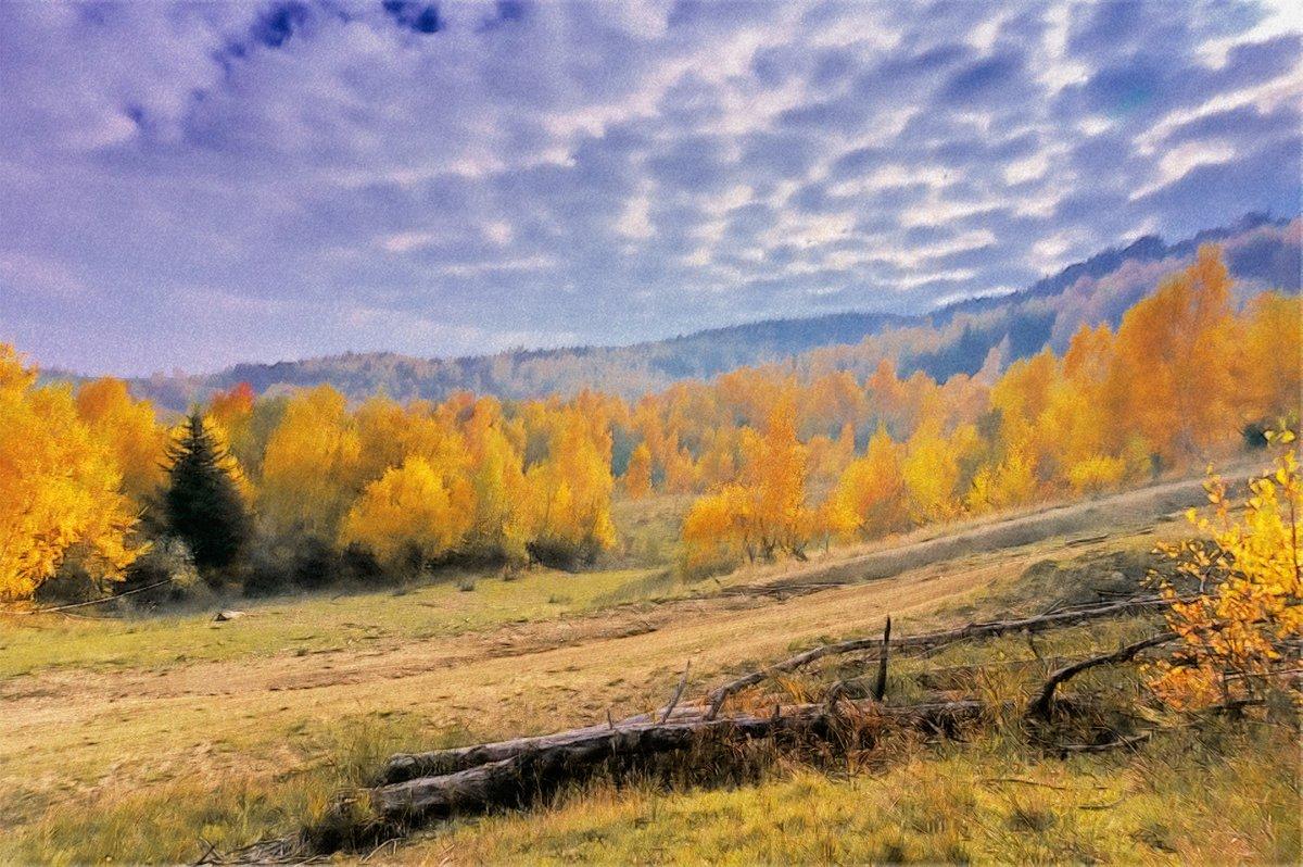Золотая осень - Сергей Форос