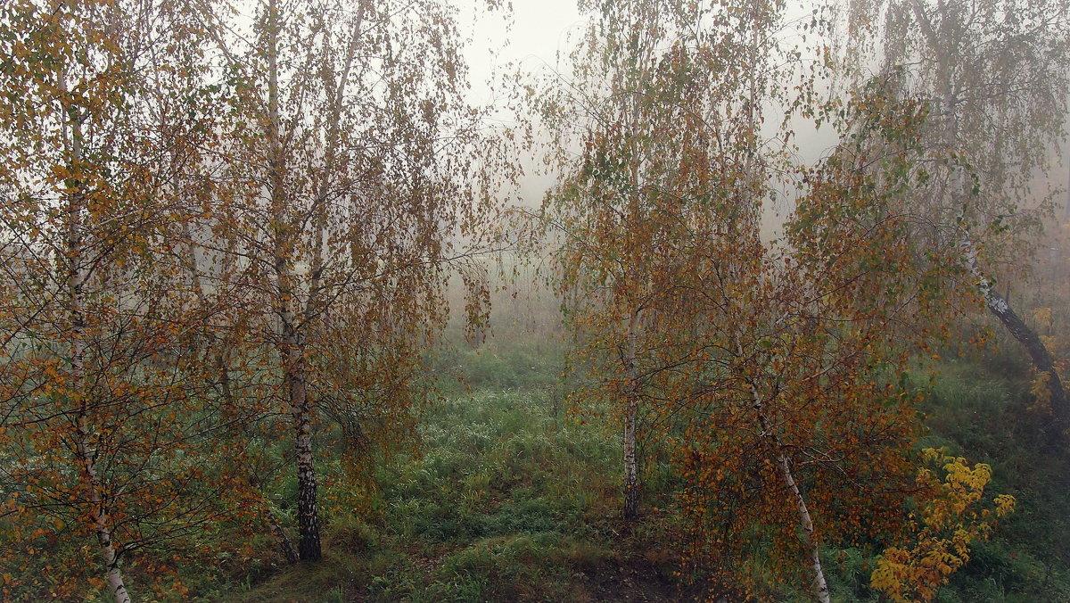 Осеннее утро - Надежда Бахолдина