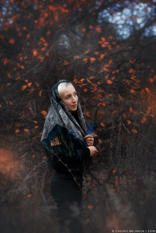 В осеннем лесу - Евгений Мельников